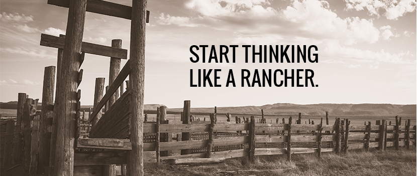 Infrastructure: Why We Love Cattle And Think Like A Rancher
