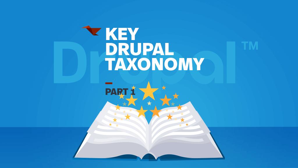 Key Drupal Taxonomy
